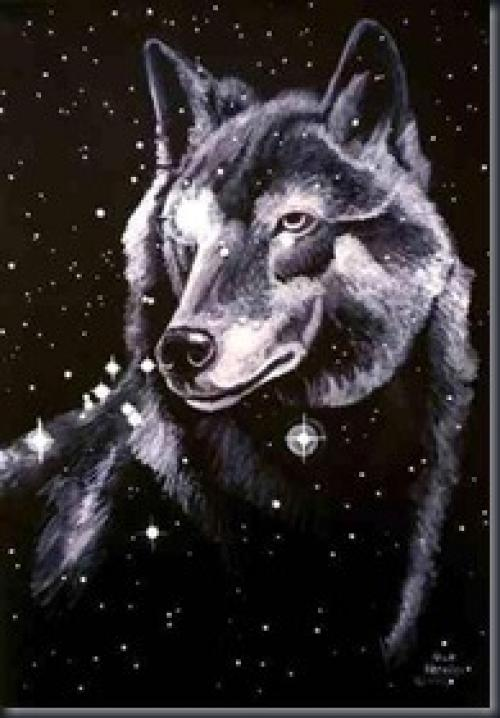 Galactic Wolves